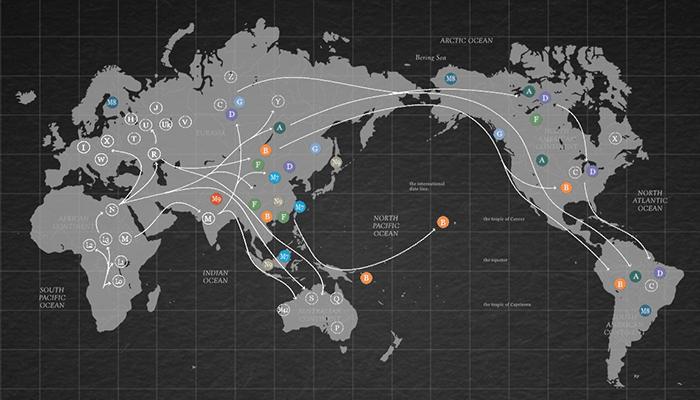 ジーンライフのハプログループ世界地図