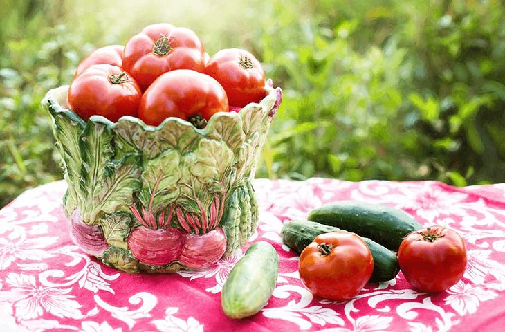 旬野菜イメージ