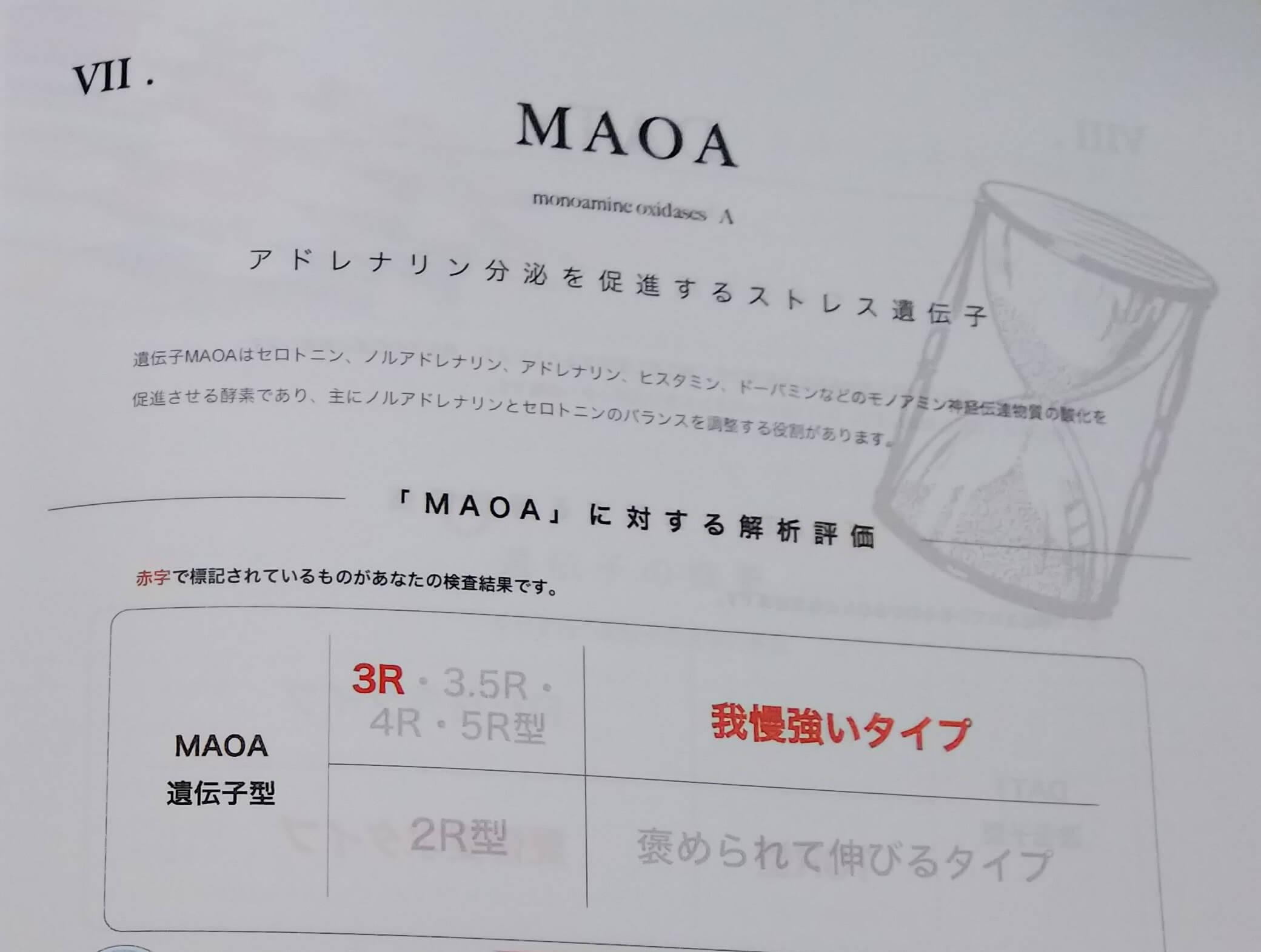 大人の能力遺伝子検査 アドレナリン分泌にかかわるストレス遺伝子(MAOA)の検査結果