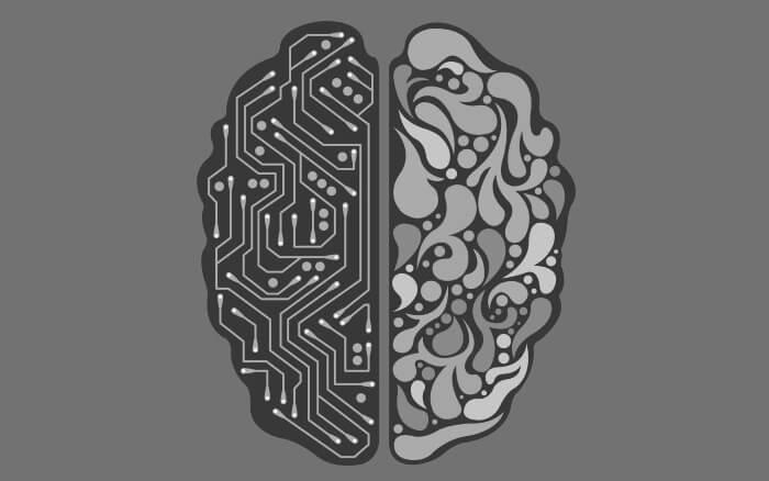 最新研究で分かった人間の知能を決める52個の遺伝子 イメージ画像