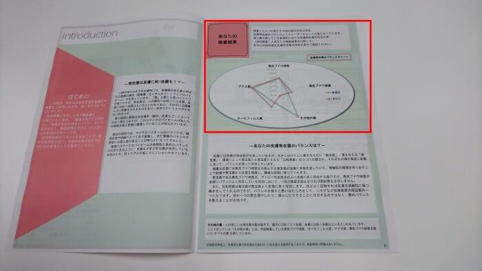 GeneLife SKIN MICROBIOMEの総合検査結果