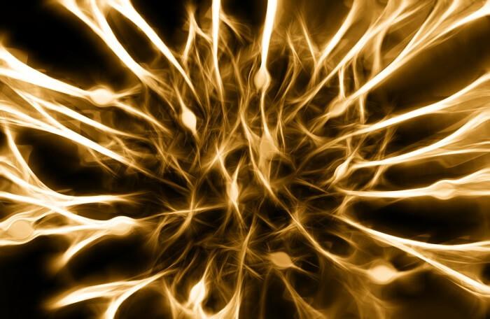 認知機能を助けるSNAP25という遺伝子の役割 イメージ画像