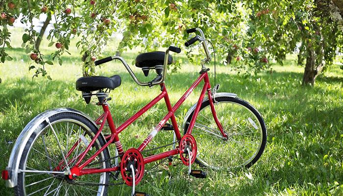 木陰の赤い自転車