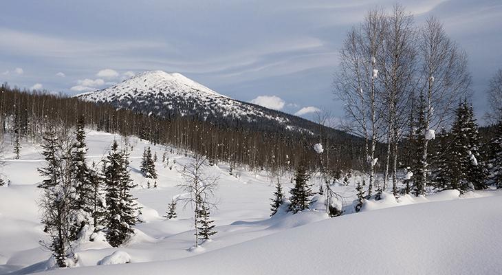 シベリアの雪原