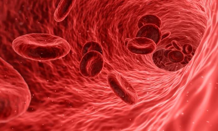 血管収縮から運動適正が分かる!スポーツ遺伝子ACEの特徴! イメージ画像