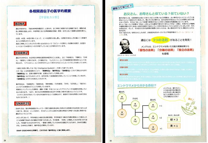 DNAファクター 子どもの能力遺伝子検査 遺伝子解説とコラム