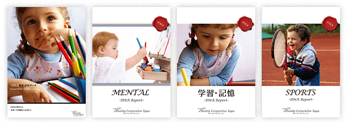 子ども能力発見DNAテストには4つのコースがある