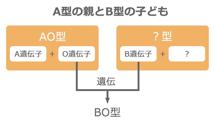 A型の親とB型の子ども血液型遺伝