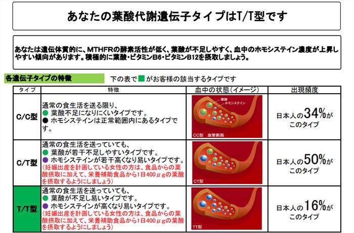 葉酸代謝遺伝子検査の検査結果