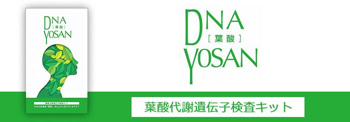 DNA YOSAN 葉酸代謝遺伝子検査キット