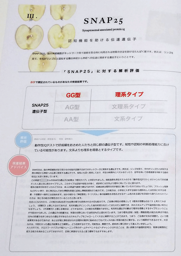 大人の能力遺伝子検査 SNAP25の検査結果
