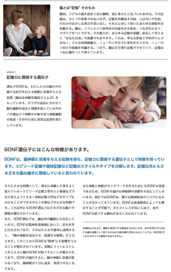 子どもの能力遺伝子検査 解説とコラム